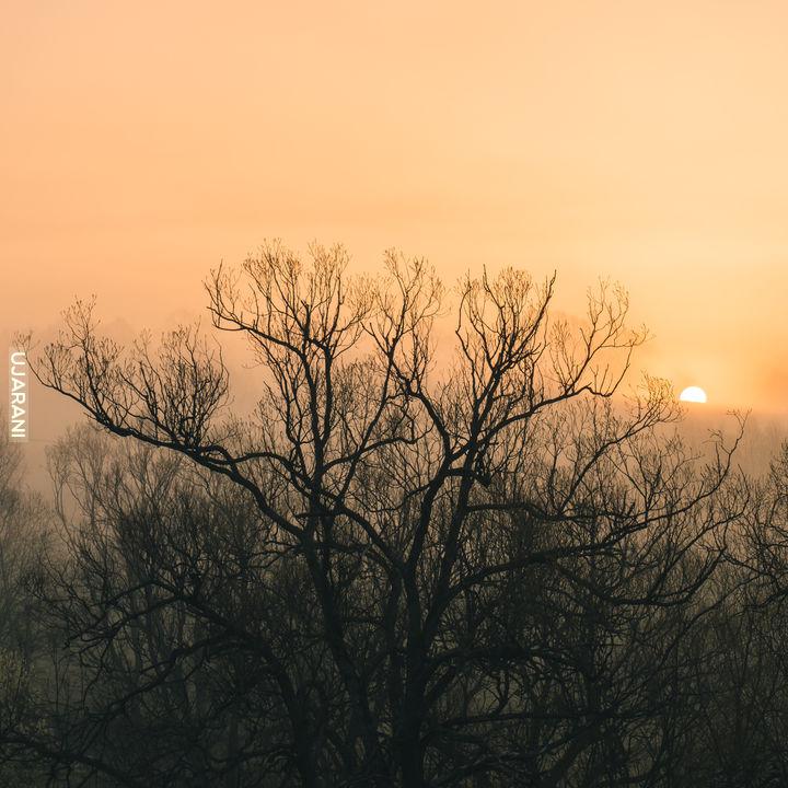 Boski wschód w Bieszczadach