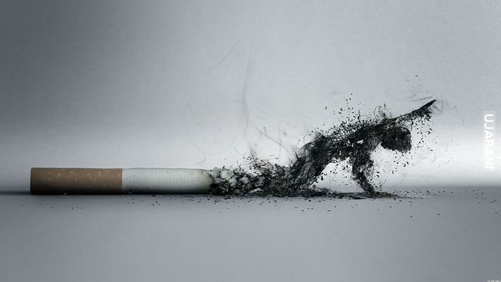 """Smoking is good for environment because it kills humans"""
