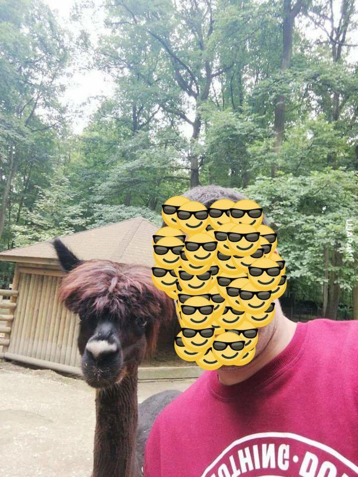 Selfi w Zoo