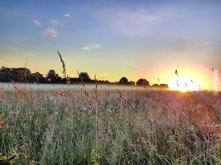 Wschód słońca i mgiełka