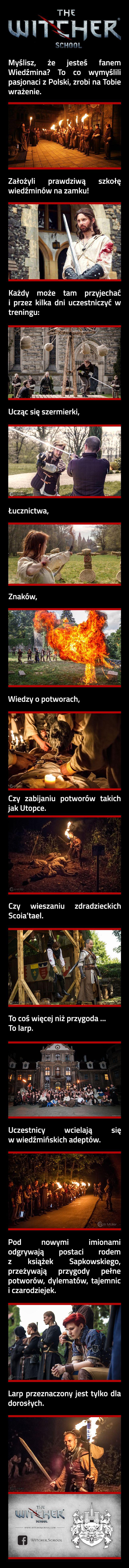 Polska Szkoła Wiedźminów