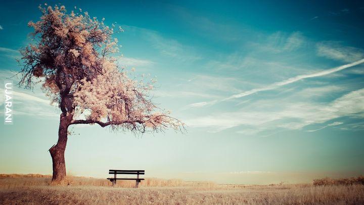 Na wypoczynek w ciszy i spokoju