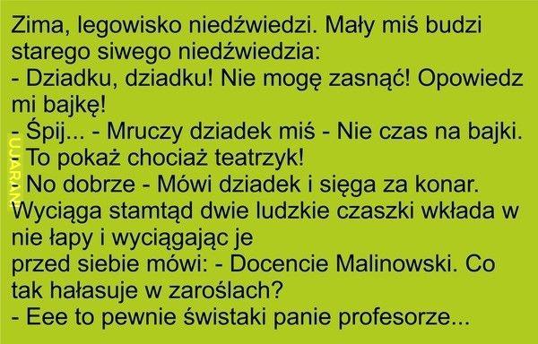 miś :)