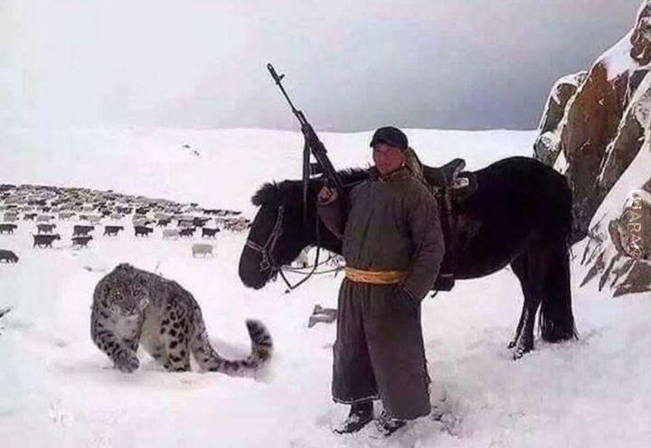Mongolskie zdjęcie