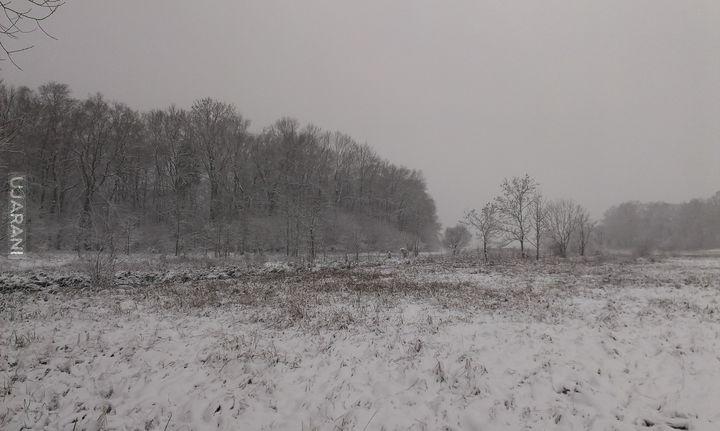 Pierwszy dzień zimy :)