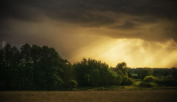 Trochę słońca ;)