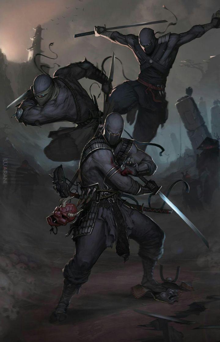 Alko ninja comando