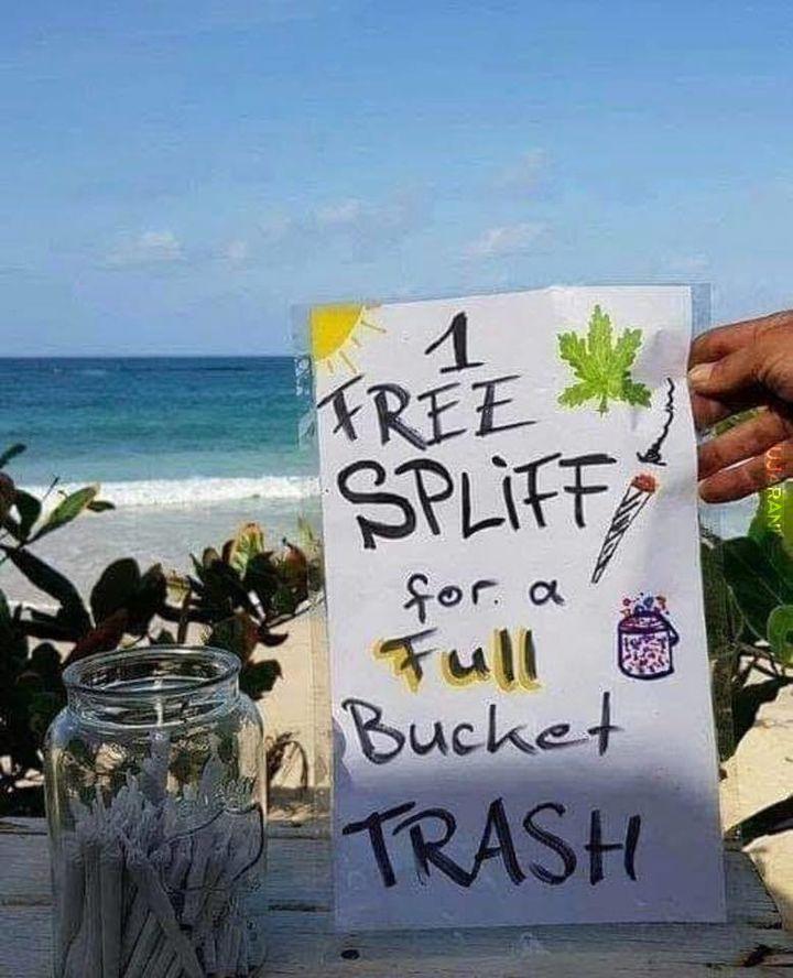 Super, w końcu polskie plaże będą czyste!