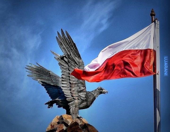 11.11.1918r. Polska odzyskuje niepodległość. Cześć i chwała Wielkiej Polsce!