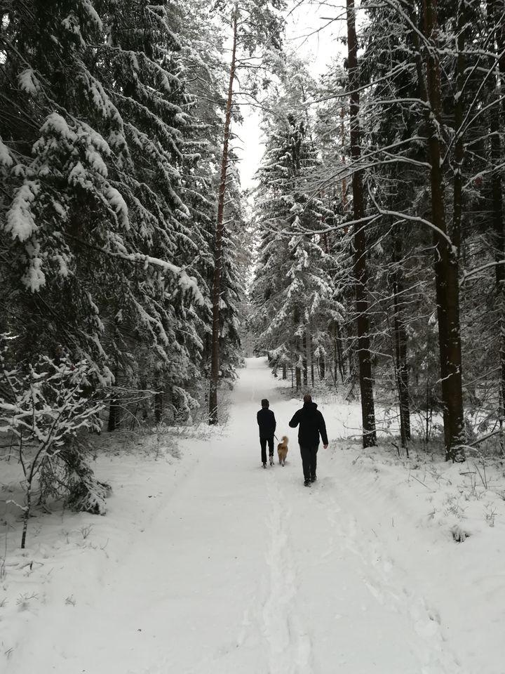 Za takie widoki kocham zimę :)
