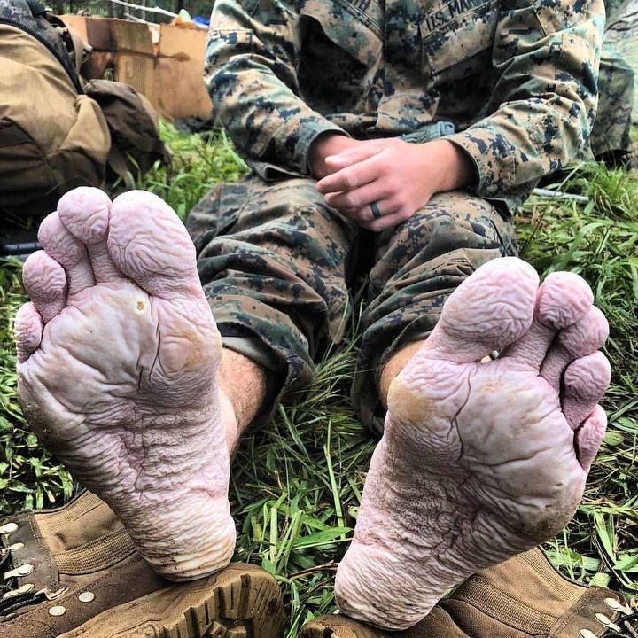 Żołnierski los