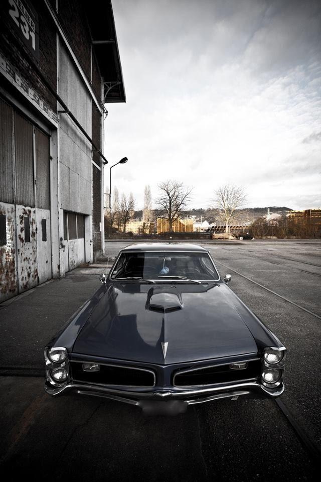 --GTO--