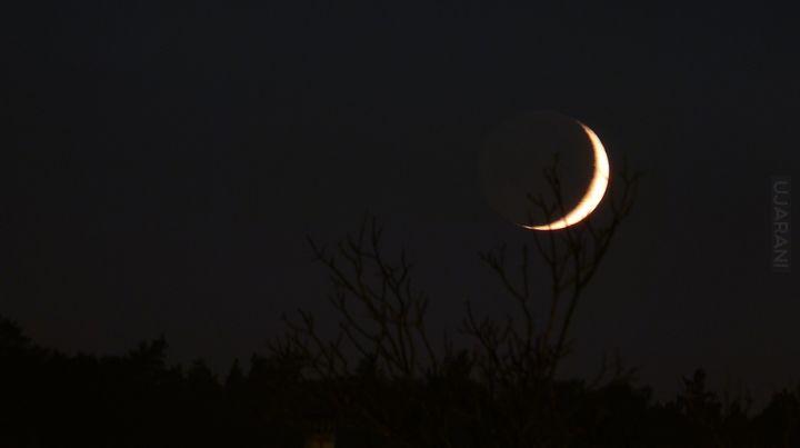 Sierp Księżyca & światło popielate dzień przed Halloween