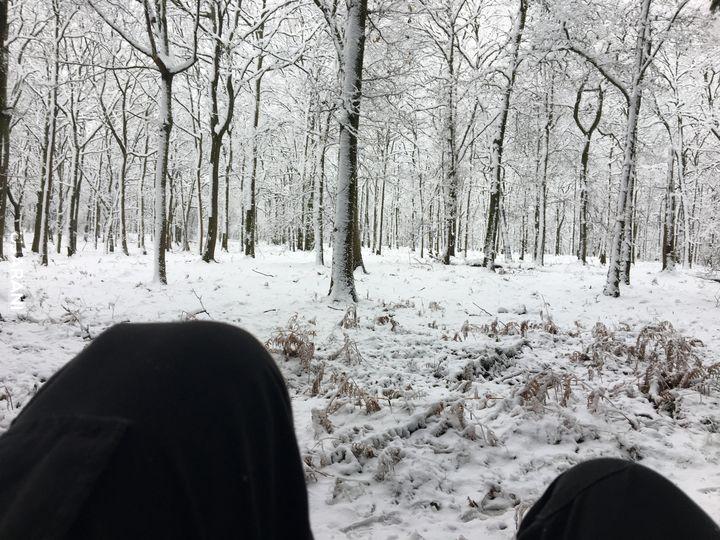 Śnieżyca w Anglii to dobry czas na chill w lesie