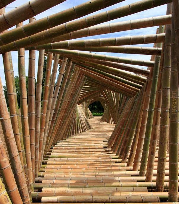 Korytarz z bambusa
