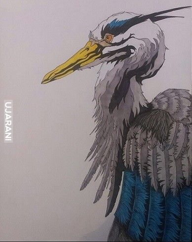 Heron!