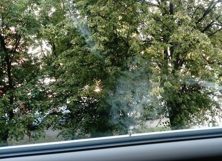 Tak czyste okna
