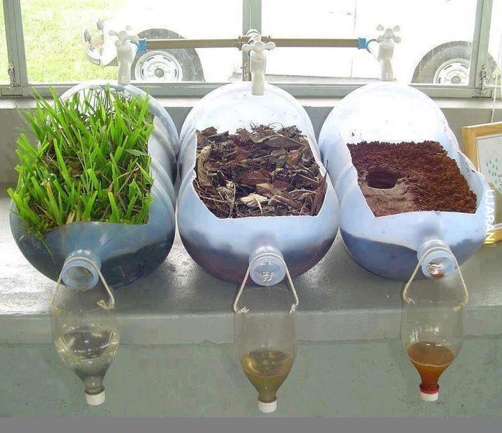 Rośliny czyszczą wodę