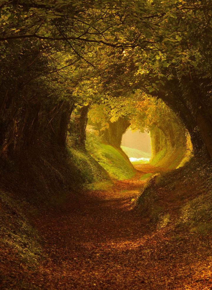 Tunel w Anglii