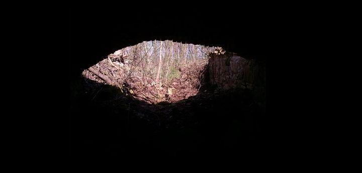 Z wnętrza chaty druida