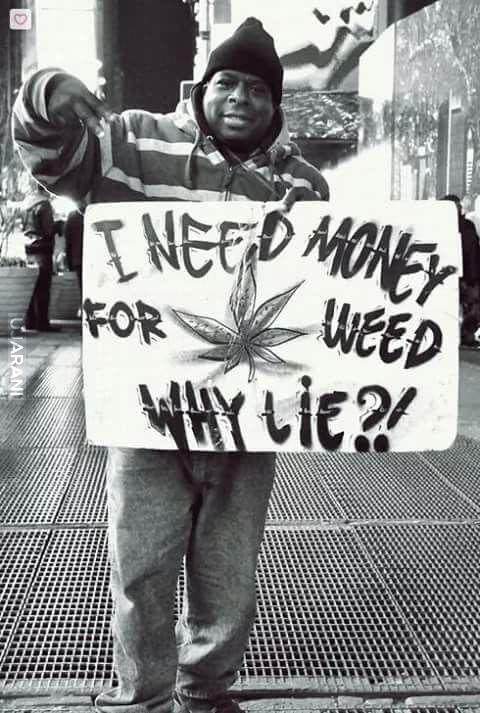 Why lie?!