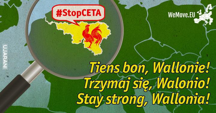 Walonia - CETA