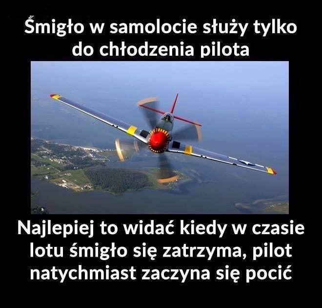 Rexona Dla Pilotów ...