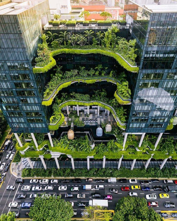 Singapur, zielono lubię