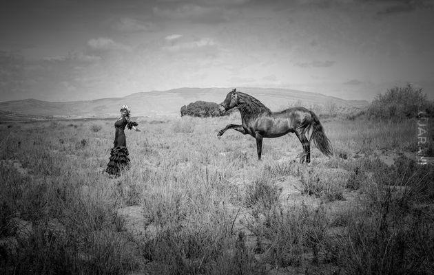 Dama i koń...