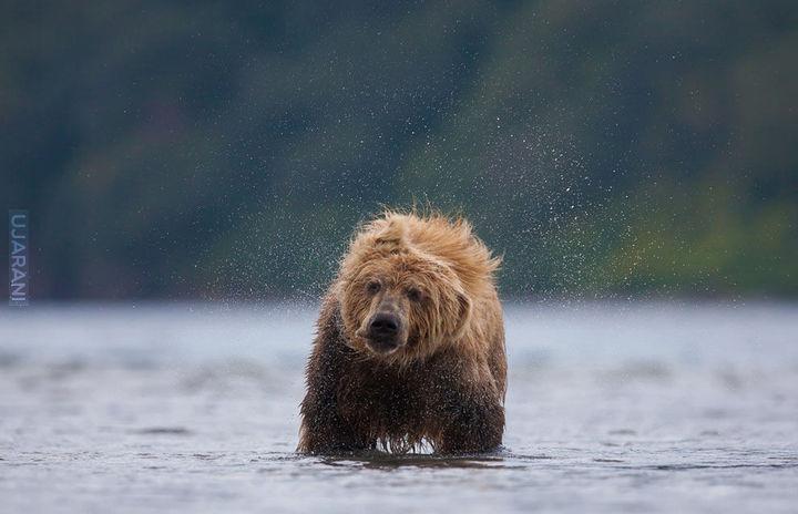 Kandydaci konkursu National Geographic 2013