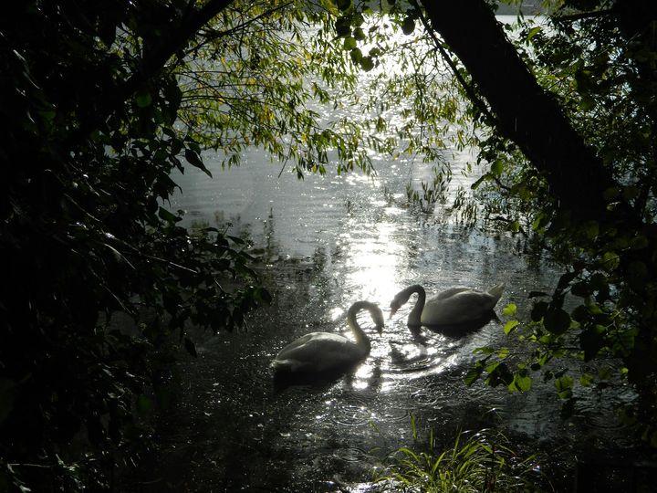 Integracja z Naturą :) cz.2