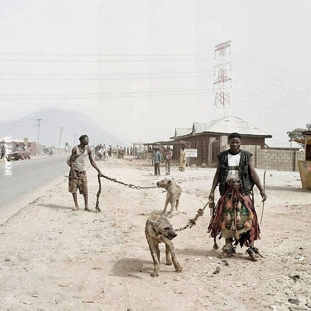 hyena boys, Nigeria