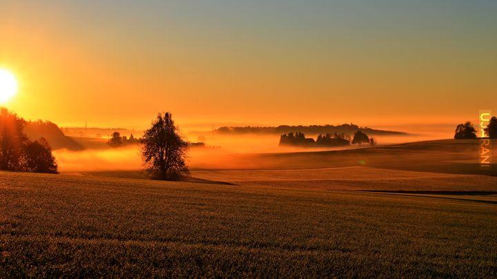 Jesienny poranek.