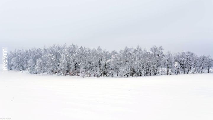 Zimowy minimalizm