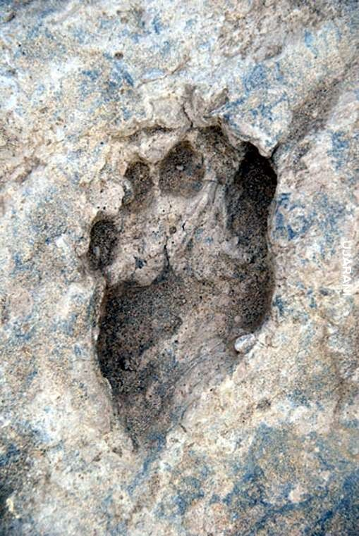 Najstarszy znany ślad człowieka