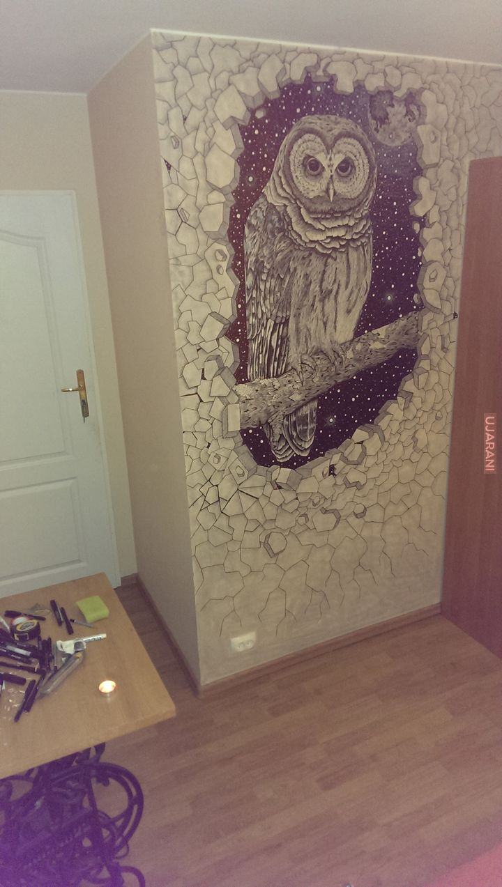 Sowa na ścianie