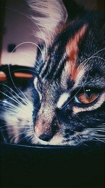 Moja księżniczka :)