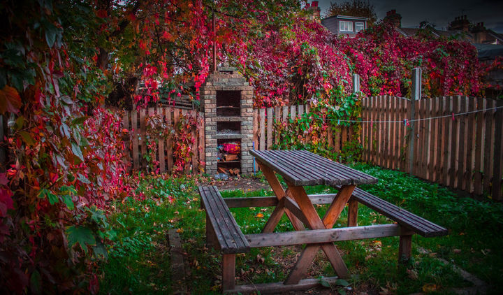 W moim magicznym ogrodzie...