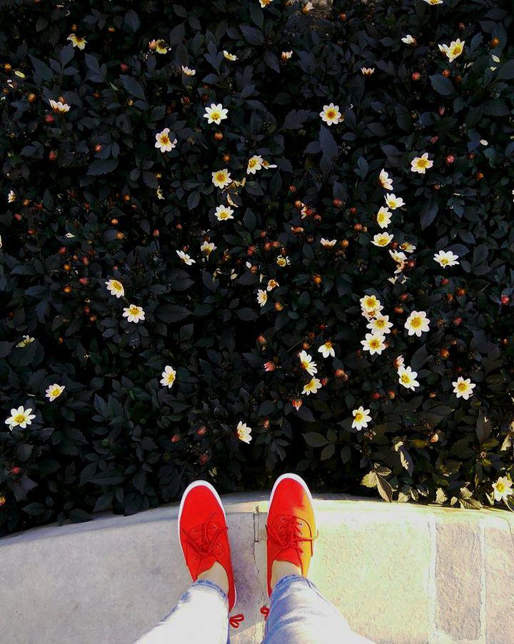 Kwiatki i trampki