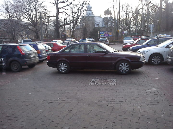 Własne: Mistrz parkowania