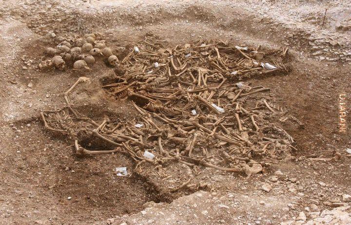 54 Wikingów z odciętymi głowami w Dorset