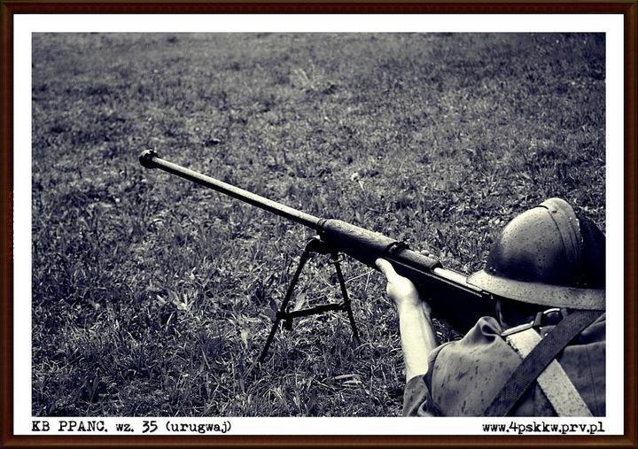 Polski karabin ppanc