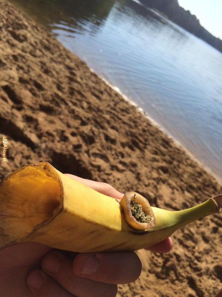 Banan w plenarze :D
