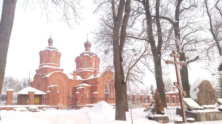 Białowieża zimą cd