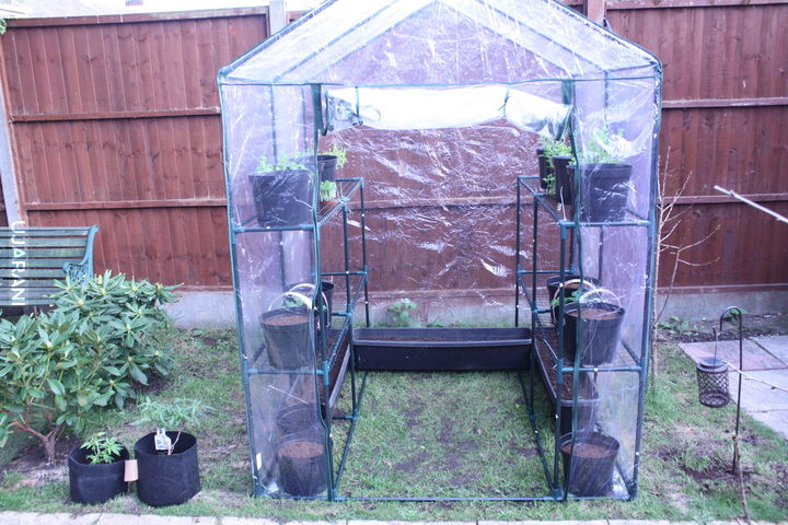 Project Greenhouse 2017