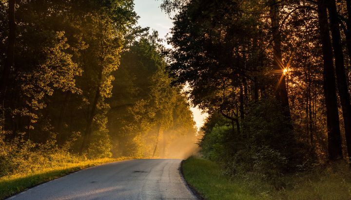 Lędzińskia droga