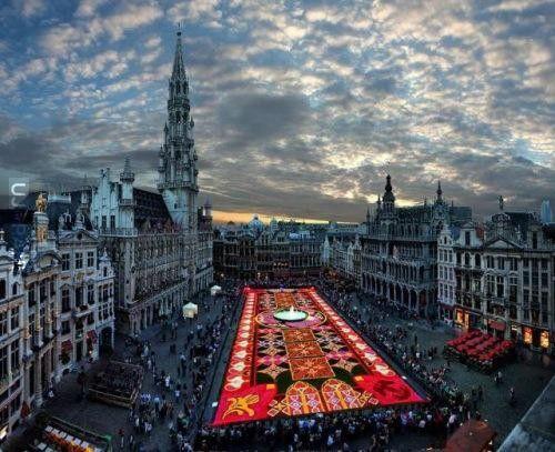 Kwiatowy dywan, Bruksela.