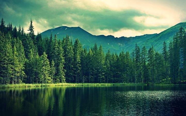 Jeziorko, góry, las.. : )