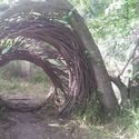 Leśny portal