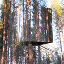 domek ma drzewie